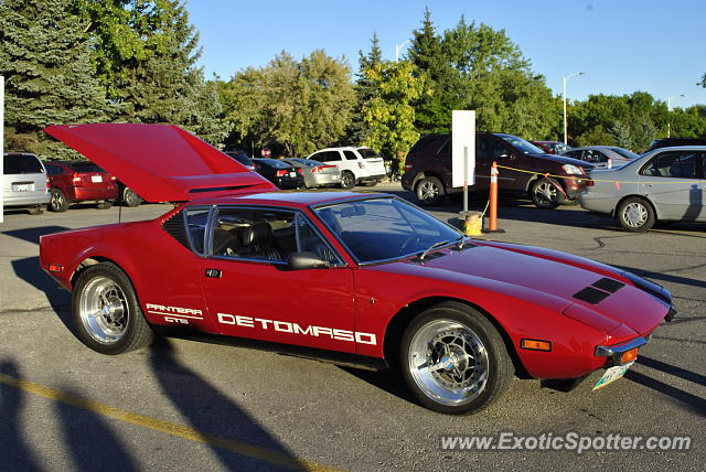 DeTomaso Pantera2 spotted in Winnipeg, Canada