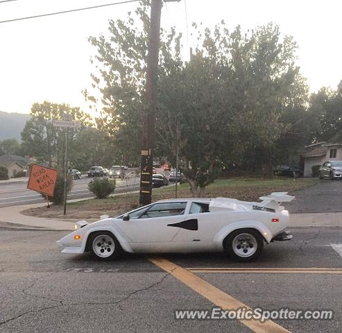 Lamborghini Countach spotted in Glendale, California
