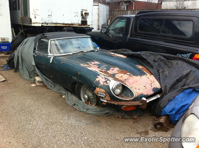 Jaguar E-Type spotted in Kitchener, Ont, Canada