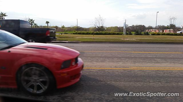 Saleen S281 spotted in Corpus Christi, Texas