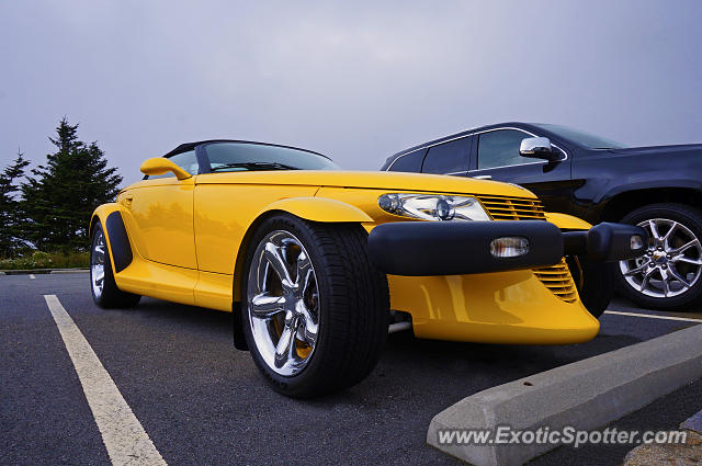 Plymouth Prowler spotted in Burnsville, North Carolina