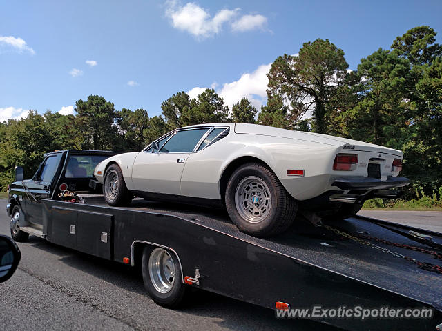 DeTomaso Pantera2 spotted in Hilton Head, South Carolina