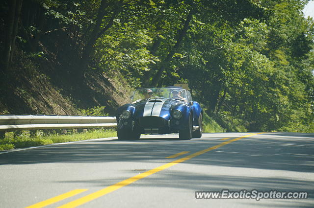Shelby Cobra spotted in Spartanburg, South Carolina
