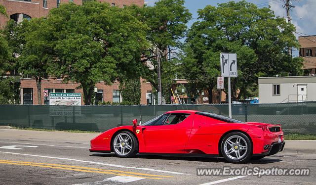 Ferrari Enzo spotted in Birmingham, Michigan