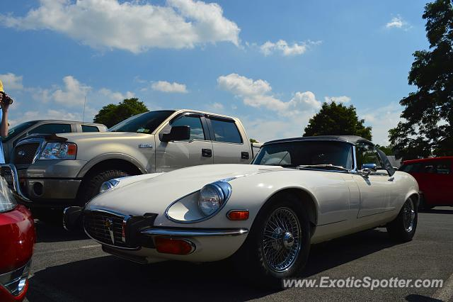 Jaguar E-Type spotted in Watkins Glen, New York