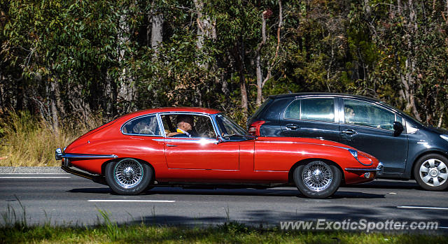 Jaguar E-Type spotted in Sydney, Australia