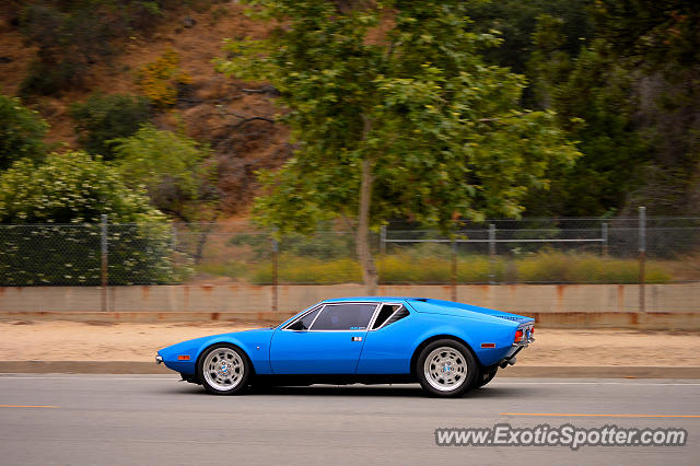 DeTomaso Pantera2 spotted in Pasadena, California
