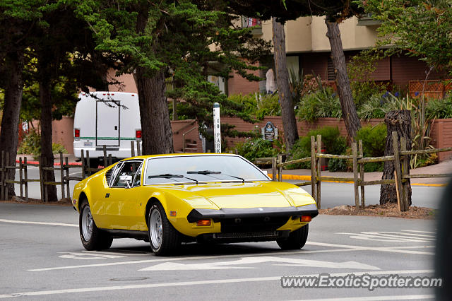 DeTomaso Pantera2 spotted in Carmel, California