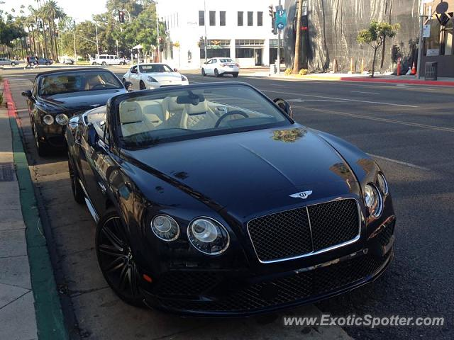 bentley continental spotted in beverly hills california on 11 24 2016. Cars Review. Best American Auto & Cars Review