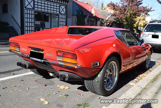 DeTomaso Pantera2 spotted in New Hope, Pennsylvania