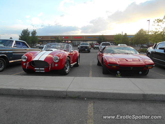 Shelby Cobra spotted in Bozeman, Montana