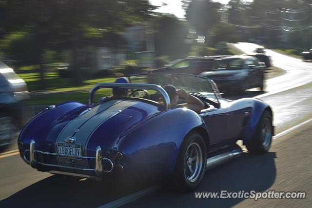 Shelby Cobra spotted in Sodus point, New York