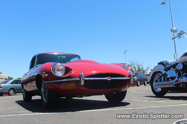 Jaguar E-Type spotted in San Diego, California