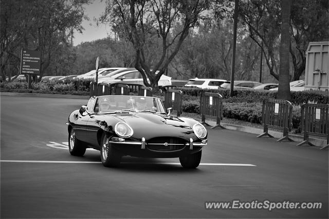 Jaguar E-Type spotted in Newport Beach, California