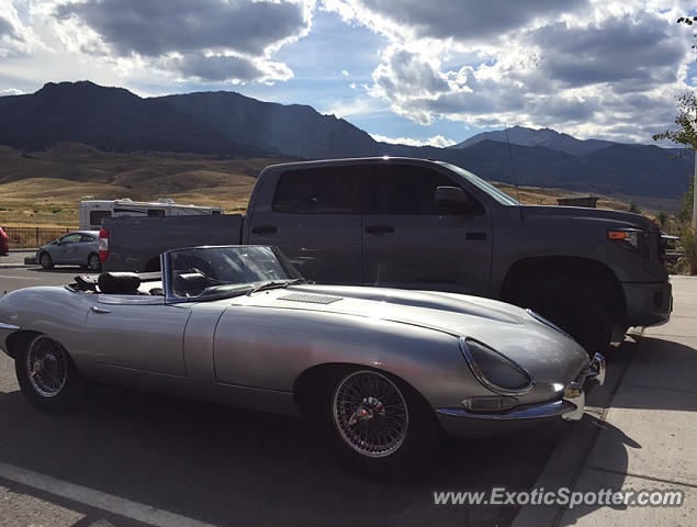 Jaguar E-Type spotted in Gardiner, Montana