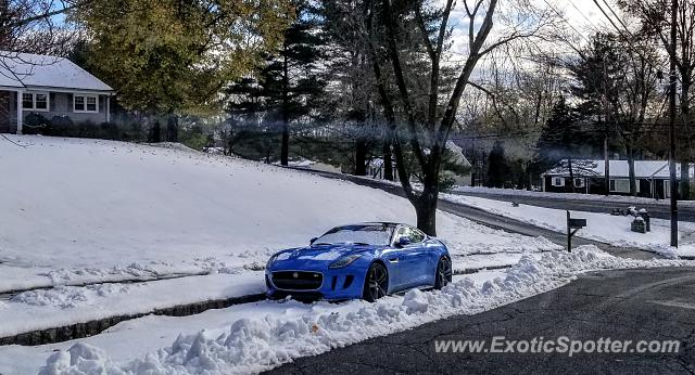 Jaguar F-Type spotted in Bridgewater, New Jersey