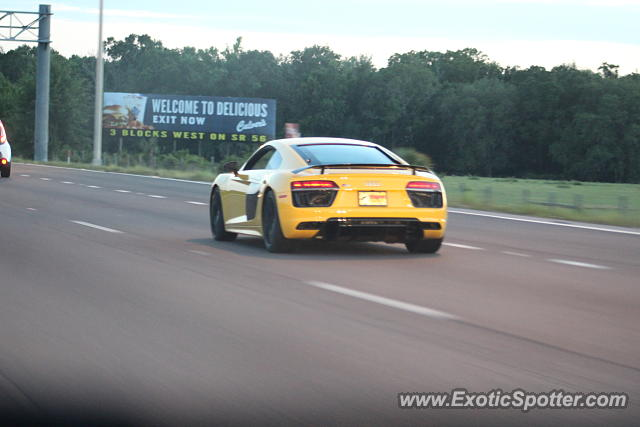 Audi R8 spotted in Wesley Chapel, Florida