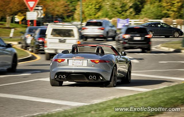 Jaguar F-Type spotted in Columbus, Ohio