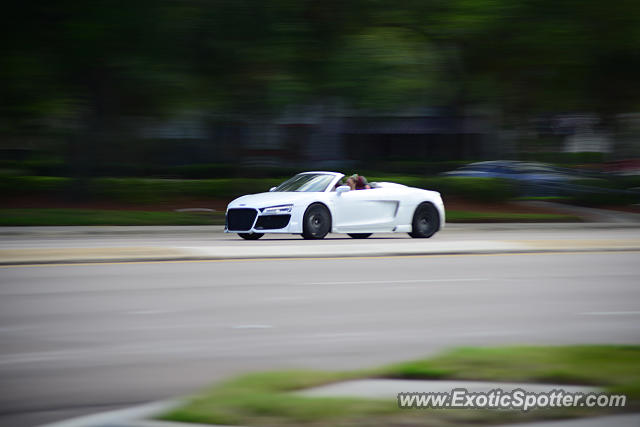 Audi R8 spotted in Clearwater, Florida