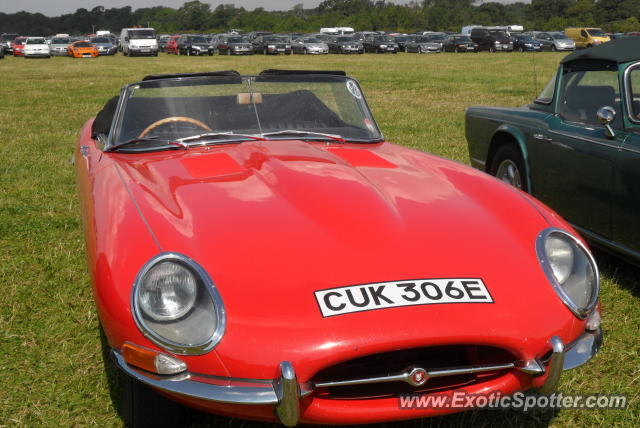 Jaguar E-Type spotted in West Sussex, United Kingdom