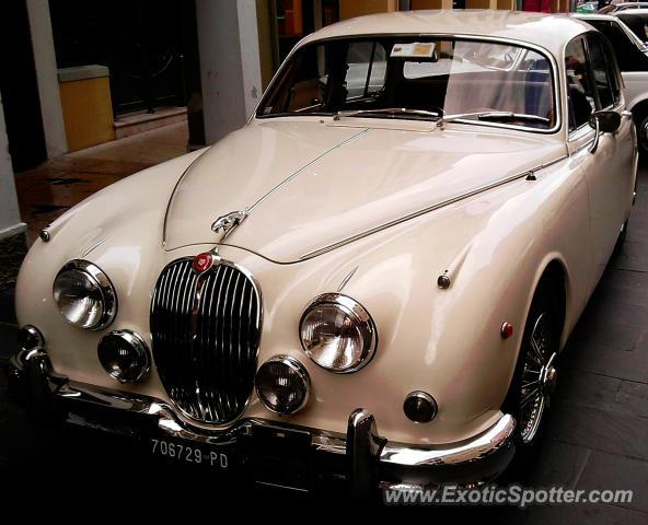 Jaguar E Type Spotted In Motta Di Livenza, Italy