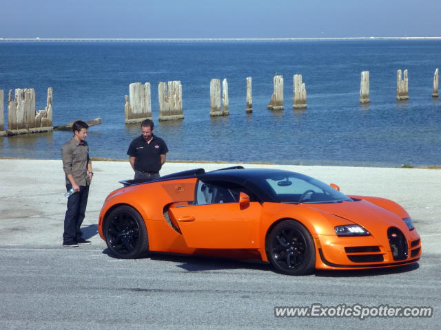 bugatti veyron spotted in tampa florida on 11 27 2012 photo 2. Black Bedroom Furniture Sets. Home Design Ideas