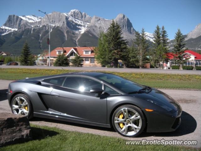 Calgary (AB) Canada  city photos gallery : Lamborghini Gallardo spotted in Calgary, AB, Canada on 02/14/2012