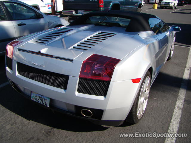 Lamborghini Gallardo spotted in Las Vegas, Nevada