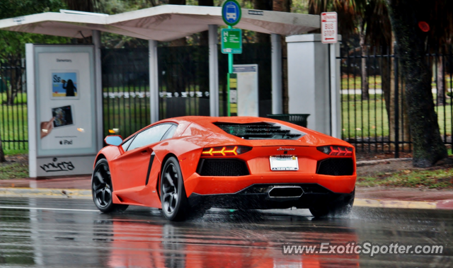 Lamborghini Aventador spotted in Miami, Florida